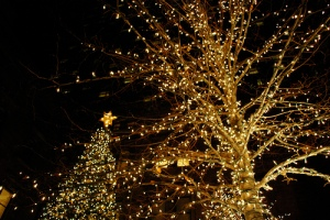 christmasoutsidelights